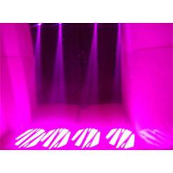 Ibiza LMH50LED | LYRE SPOT A LED 60W